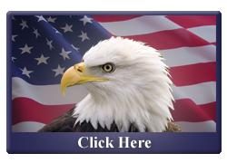 eagle_button_blue